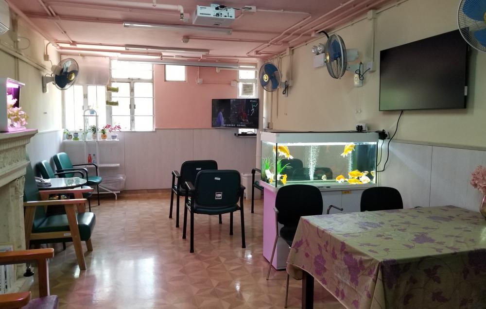 活动区/客厅/饭厅